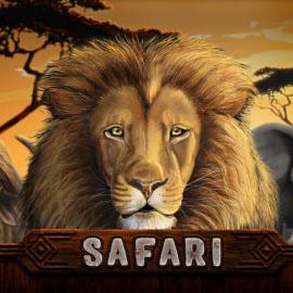 Safari Slot Review